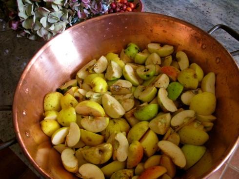 appels in vieren snijden, het klokhuis er niet uithalen en ook niet schillen