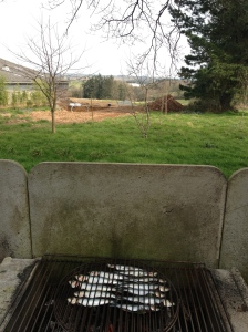 De eerste sardientjes van het seizoen op de barbecue met zicht op het zwembad in aanbouw !