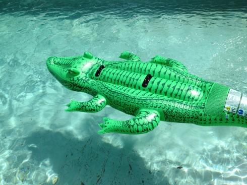Zalig zwembad !!