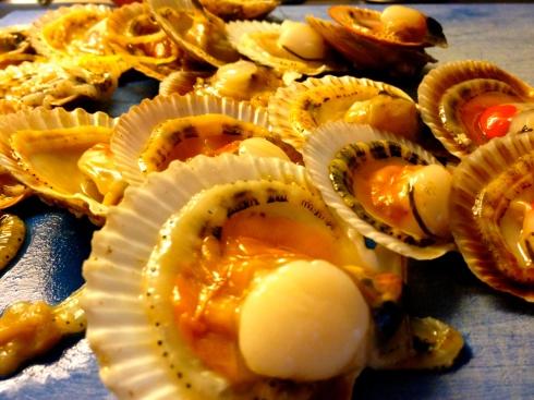 """Heerlijke kamschelpen ! In het Frans heet het pétoncles. En in Oostende zeggen ze petoenkels ! Deze gaan mee in onze """"open lasagne met al het lekkers uit de zee wat Bretagne te bieden heeft"""". Dus : kamschelpen, bouchot  mosselen, kokkeltjes, tapijtschelpen, langoustines.  Van het kookvocht maakt Joris een heerlijke lichte saus en ter afwerking komt er een flinterdun lasagne velletje op. Dan nog verse kruiden uit onze serre erover gesnipperd en laat het feest dan maar beginnen ! Onze Zwitserse gasten zijn ondertussen goed vertrokken en andere gasten hebben hun plaats ingenomen. De enen zijn op doorreis vanuit Paimpol, de anderen gaan verder naar St Emillion. Geniet van het zonnige week-end, dat doen onze gasten ook ! Anouck vanuit www.lamaisonblancheauxvoletsbleus.com"""