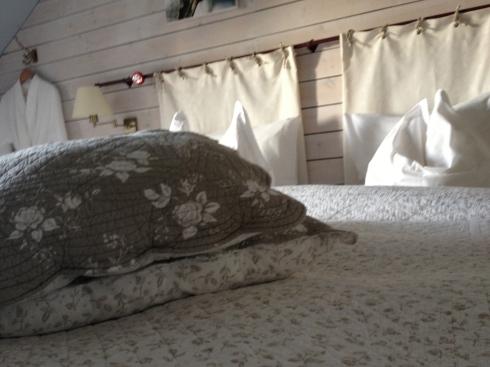 Op vakantie in eigen huis ! Geweldig ! We slapen vannacht in de kamer Blanc des Blancs. Net de regendouiche uitgreprobeerd....zalig ! Jammer dat de eigenaars er niet zijn om voor ons te koken :):):) !