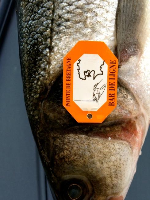 Wilde zeebaars op het menu vanavond. Zo'n labeltje hangt aan de vis om te bewijzen waar en door wie hij gevangen is voor de Bretoense kusten. Smakelijk !