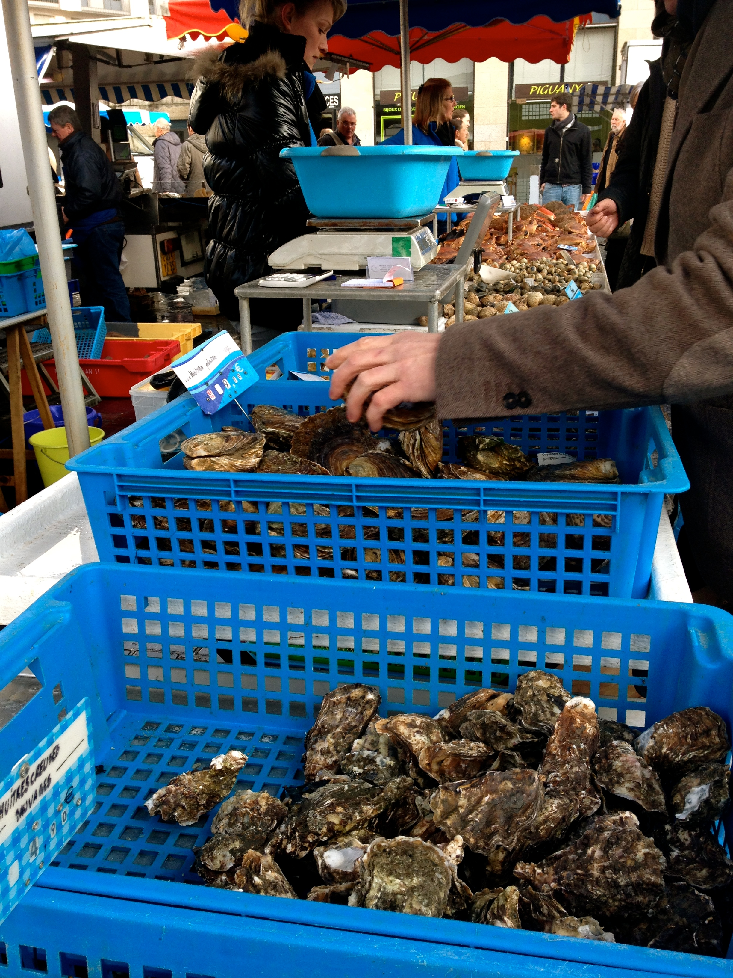 oesters Auray