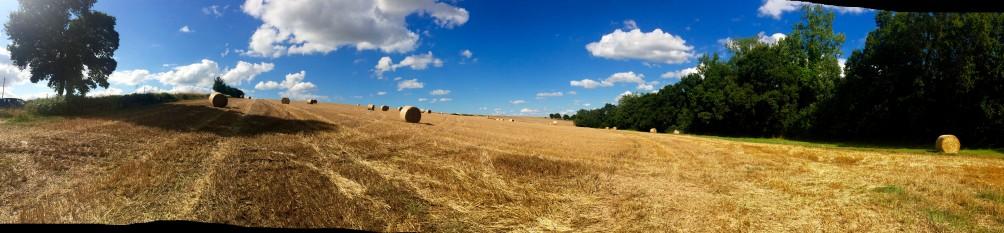 Oogstmaand geeft prachtige vergezichten ! Welkom in Bretagne :). Anouck vanuit www.lamaisonblancheauxvoletsbleus.com